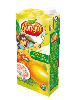 Banga cocktail de fruits 2L